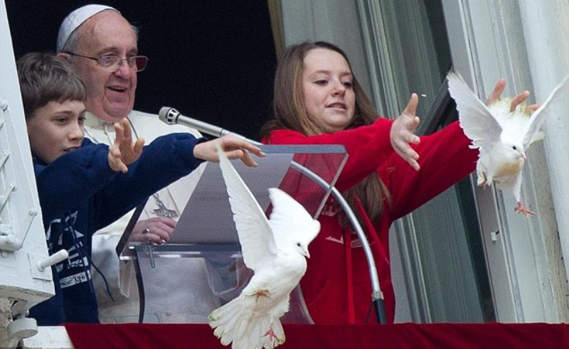 غراب يقتل حمامة سلام البابا