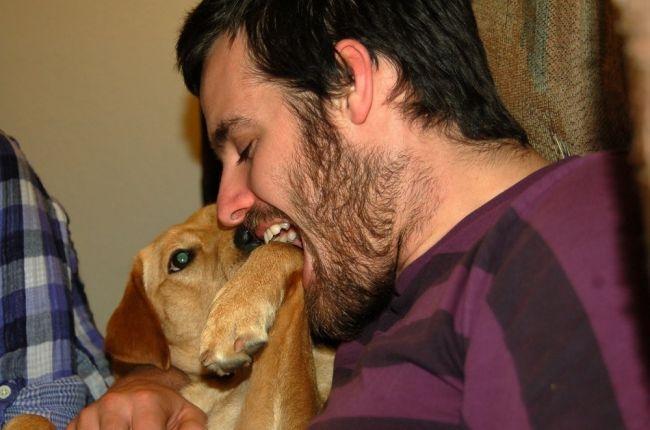 أميركي يعض أنف كلب هاجم زوجته