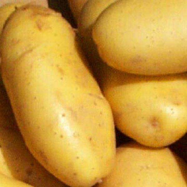 البطاطس لتبيض البشرة