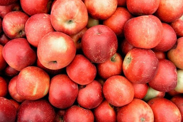 التفاح: فاكهة الجمال
