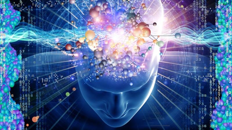 دراسة: الانسان يتذكر ما يلمسه أكثر مما يسمعه
