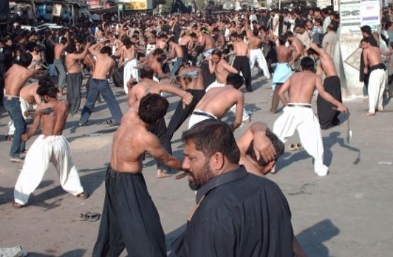 الشيعة في الجزائر