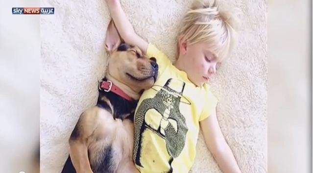 صداقة مميزة بين طفل وكلب