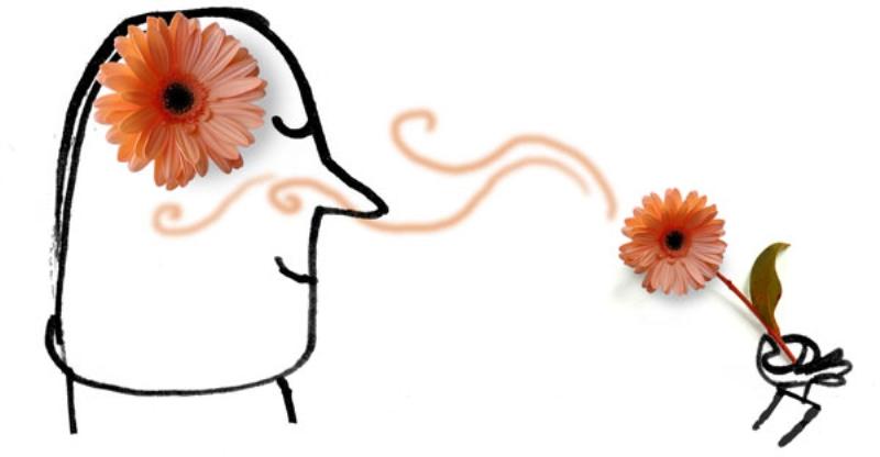 أنف الانسان يمكنه تمييز أكثر من 10 آلاف رائحة
