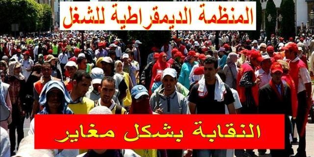 منظمة نقابية مغربية تندد بقرار لحكومة هولندا يحرم   المهاجرين من حقوقهم الاجتماعية