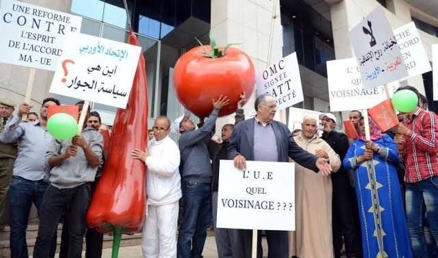وقفة احتجاجية لمنتجي الخضر والفواكه في الرباط ضد الإجراءات الجديدة للاتحاد الأوربي