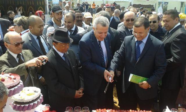 بلعسال:  منتوج توت الأرض يشكل انخراطا في مخطط المغرب الأخضر
