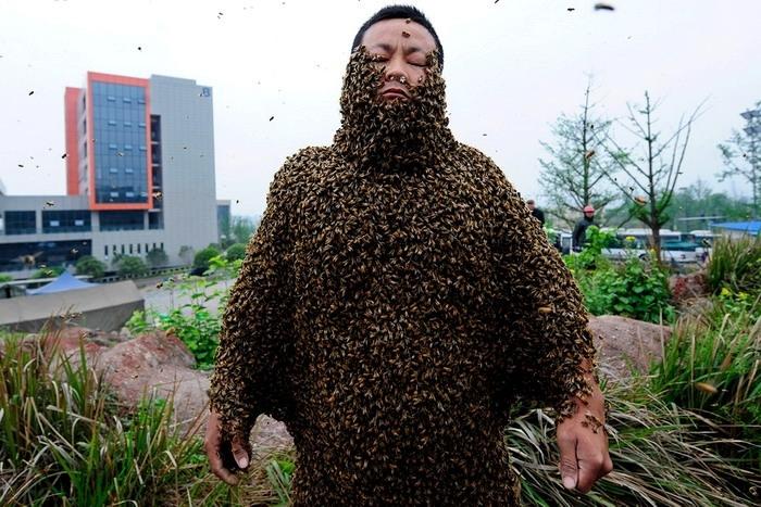 صيني يغطي جسمه بـ460 ألف نحلة... لترويج عسله