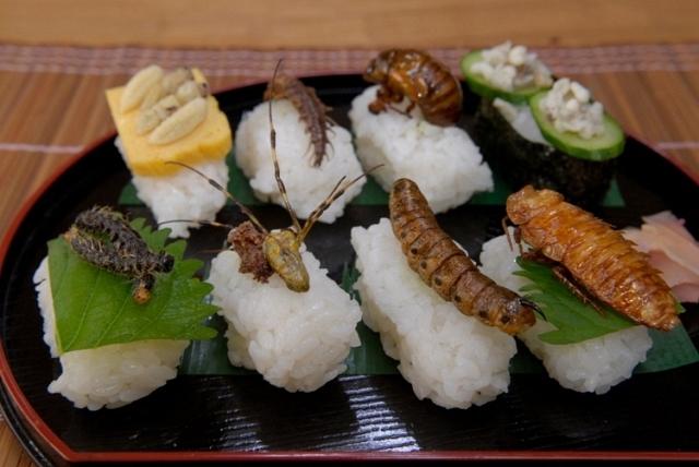 الحشرات ...غذاء بديل للحوم سيغزو العالم