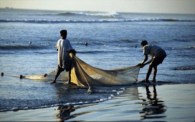 المغرب الاول عربيا وإفريقيا في صيد الأسماك وتمار البحر