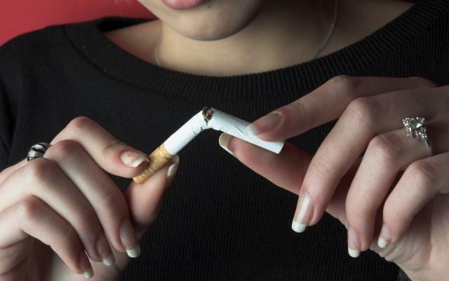 شركات التبغ تعلم المغاربة كيفية تلفيف الحشيش