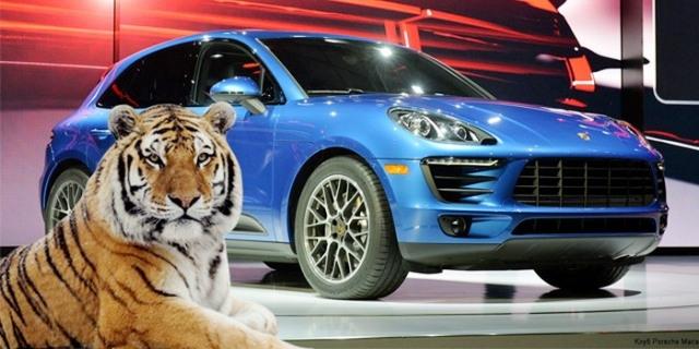بورش تمنع الدعاية لسياراتها بالنمور الحية