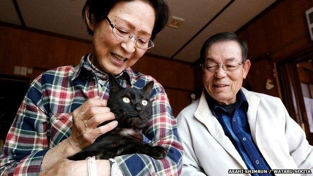 قط ياباني يعود لأصحابه بعد ثلاث سنوات من الغياب
