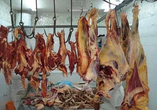 فضيحة.. مجازر تسوق لحوما فاسدة في المحمدية