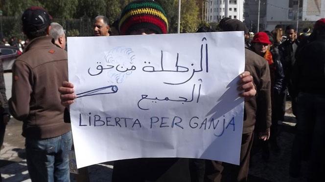 اعتقال ناشط تونسي يعيد النقاش حول تقنين استهلاك