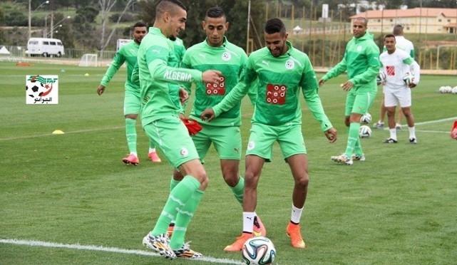 تغطية لتداريب المنتخب الجزائري