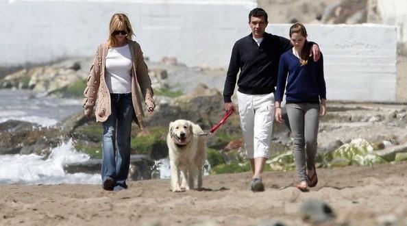أنطونيو بانديراس وميلاني غريفيث يتنازعان على حضانة كلابهما