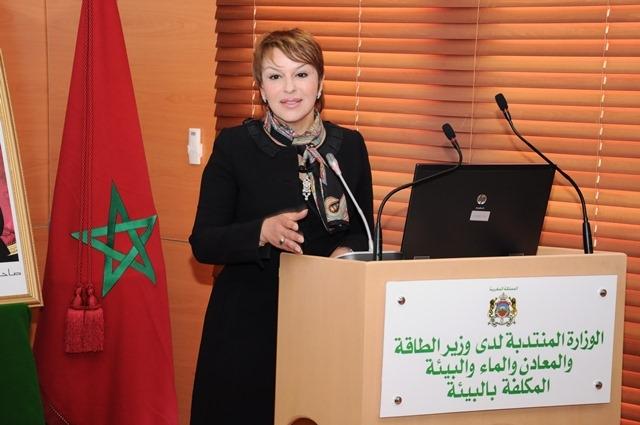 بلورة مخطط للاستثمار الأخضر بالمغرب
