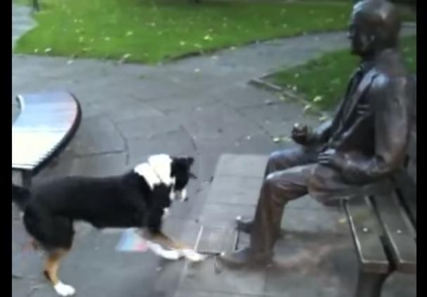 فيديو طريف..كلب لم يفهم لماذا لا يريد هذا التمثال اللعب معه