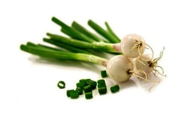 كيف يحمي البصل الأخضر القلب و الجهاز التنفسى؟