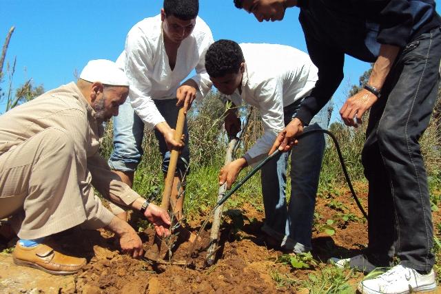 ليبيا: انطلاق برنامج بيئي في مدينة جالو