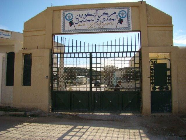 الجزائر: إلزامية التكوين المؤهل لتوظيف في 2015
