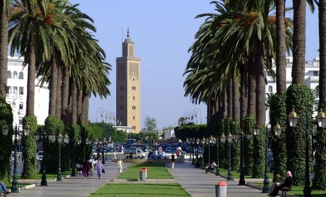 المغرب:عصابات متخصصة في سرقة العقارات المحفظة