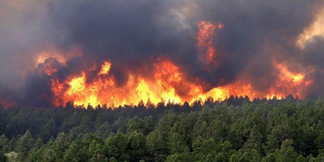 تونس: أياد خفية وراء حريق إلتهم 11.8 هكتارا  بجبل بوقرنين
