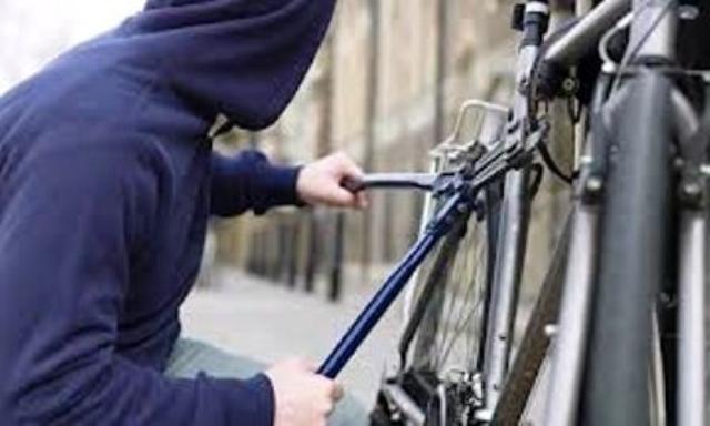 إيقاف عدة أشخاص في مدينة الجديدة بشبهة تكوين عصابة إجرامية والتورط في الاعتداء والسرقة