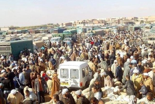 الإحصاء العام للسكان في المغرب..إطلاق حملة تواصلية للقرب في الوسط القروي