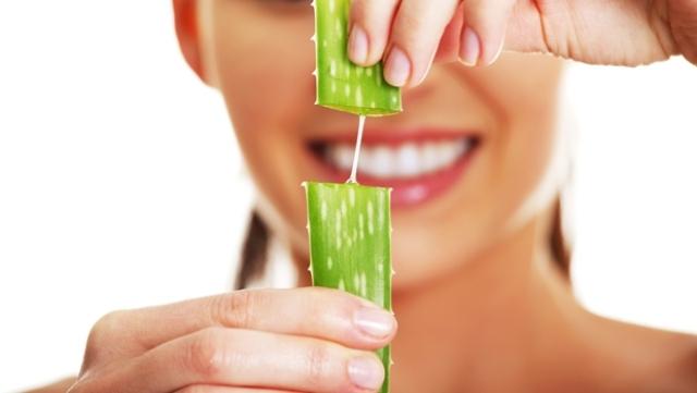 فوائد الألوفيرا السحرية على صحة وجمال شعرك
