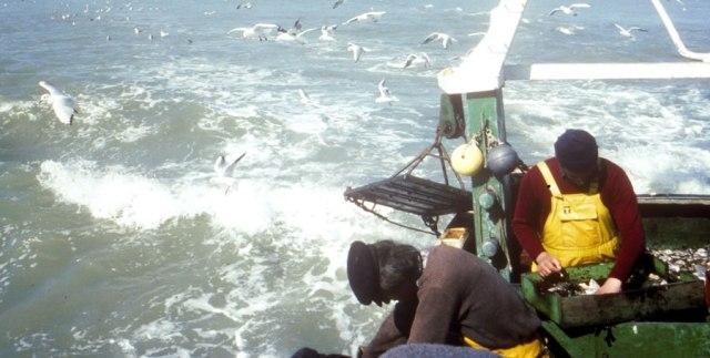 المغرب يجبر بواخر الصيد الأوروبية على الانتظار حتى شتنبر المقبل