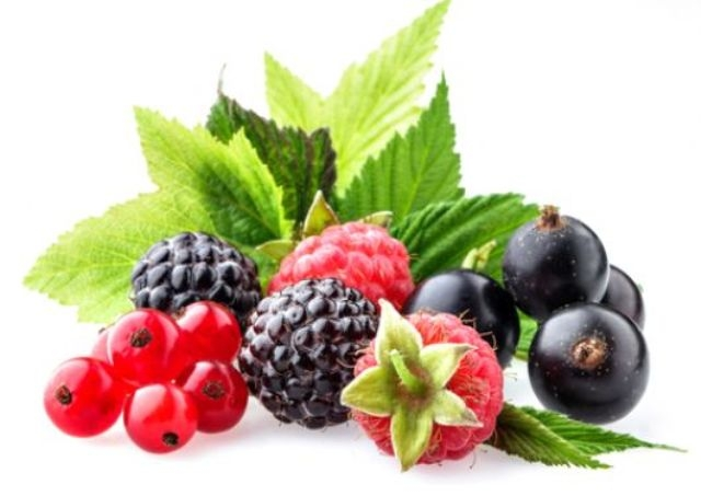 تعرفوا على الاطعمة الأكثر صحة في العالم