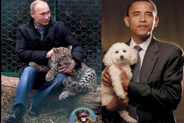 بوتين يداعب فهدا وأوباما يداعب كلبا
