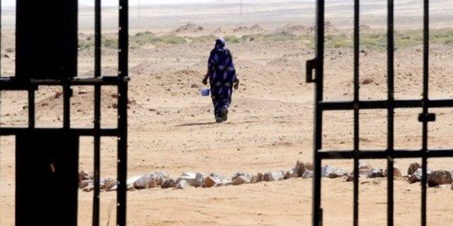 أهم فصائل التحالف السني المسلحة في العراق..