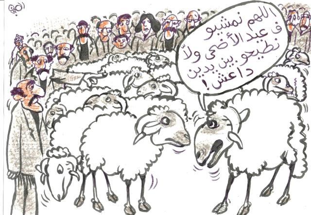 أسعار  الأكباش في المغرب تحلق عاليا..ورسامو الكاريكاتير يتبارون في استلهام أفكارهم من الأسواق