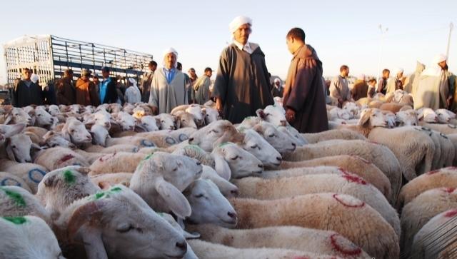 صناع تفليديون مغاربة في معرض