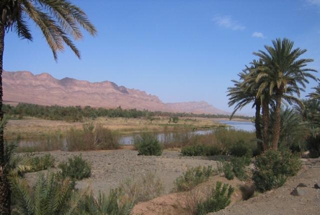 وزيرة مغربية:هذه الجماعات في اقليم زاكورة منكوبة بفعل إشكالية ندرة المياه