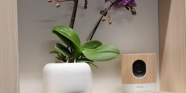 كاميرا ذكية لمراقبة كل حركة بالمنزل وتحليل الهواء داخله