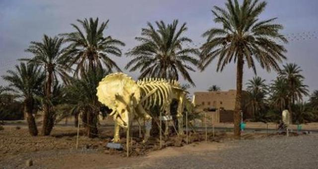 أرفود المغربية أكبر متحف مفتوح في العالم لتحف ما قبل التاريخ