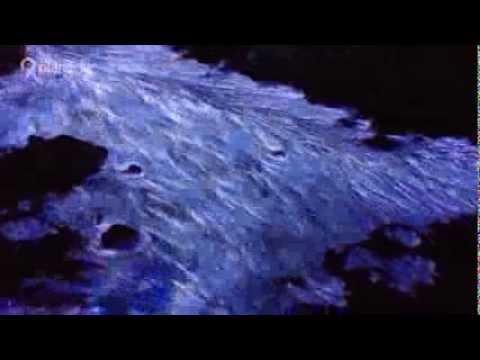 حِمم زرقاء من بركان كاواه إيين