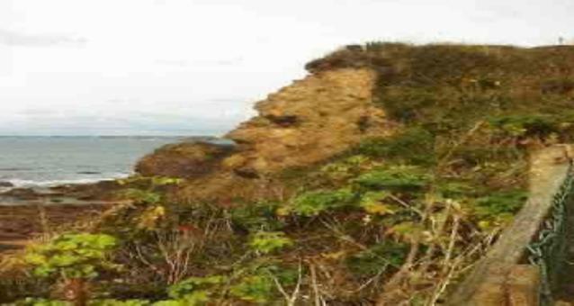 منحدر صخري بملامح إنسان يحظى بإعجاب المئات