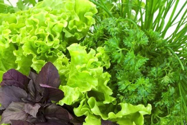 فوائد الخضروات الورقية على الجسم المثالي