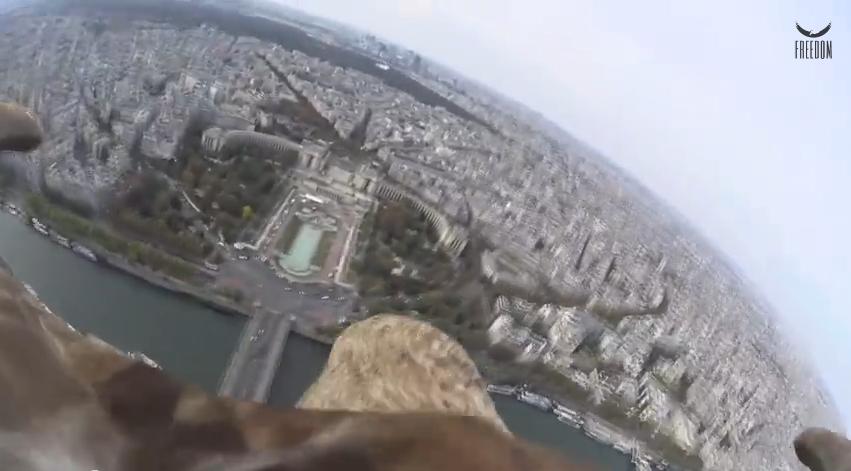تصوير باريس من فوق بواسطة كاميرا مثبثة فوق ظهر نسر
