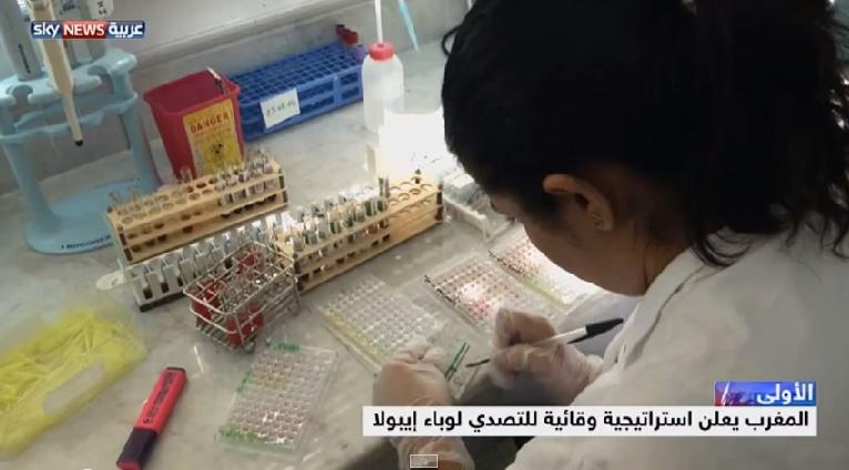 استراتيجية المغرب لمحاربة إيبولا