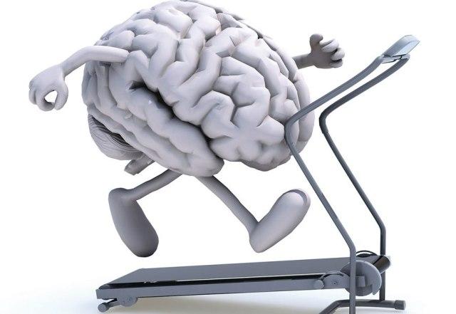 5 أطعمة لعقلٍ أفضل بمفعولٍ سريع