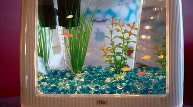بالصور: 10 أفكار لاستخدام حوض الأسماك في الديكور