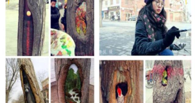 شاهد.. لوحات فنية رائعة من ثقوب الأشجار