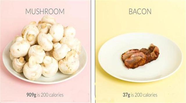 بالصور: تطبيق يختار الطعام والسعرات الحرارية التي تحتاجها
