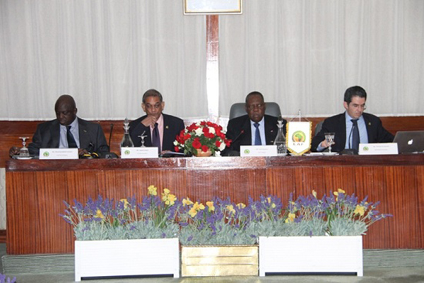 الكاف تضع خطة عاجلة لتنظيم كأس افريقيا 2015